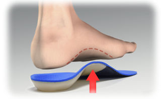 FAQ about Orthotics!